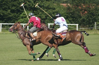 Entry to The Gatsby National Polo Event from R50 (Up to 55% Off)