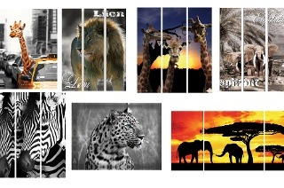 Animal Wall-Art Prints from R229 Including Delivery (50% Off)
