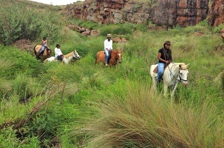 Horse Ride with Lunch for Two People from R378 at Adventure Horse Riding (Up to 56% Off)