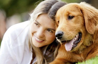 Dog Behaviour and Psychology Online Course for R399 with Pet Addict (93% Off)