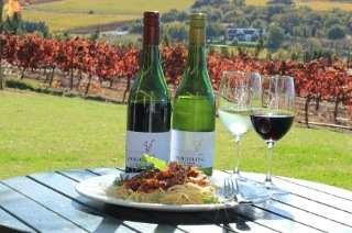 Wine Tasting and Choice of Meat or Vegetarian Pasta from R90 at Vondeling Wines (Up to 55% Off)