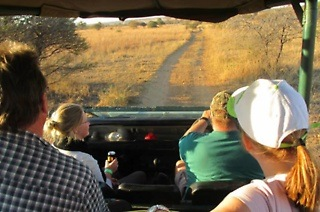 Game Drive from R199 with Optional Accommodation with Ngiri Safaris (Up to 55% Off)