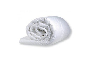 Protea Collection 300 GSM Hollow Fibre Duvet Inners from R249 Including Delivery (Up to 38% Off)