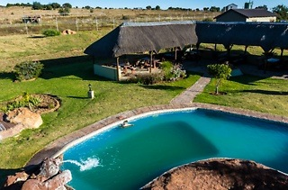 Game Drive from R200 with Optional Accommodation at Otavi Lion Park (Up to 55% Off)