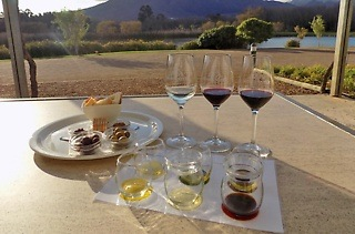 Wine Tasting and Olive Oil or Olive Tasting from R55 at Morgenster Estate (Up to 52% Off)