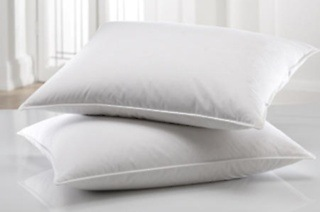 Synthetic Goose Down Pillow from R229 Including Delivery (Up to 47% Off)