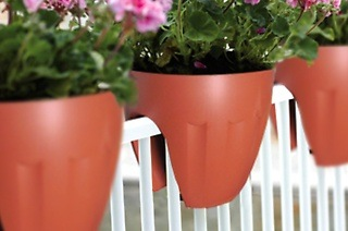 Set of Two Plastic Pot Planters from R289 Including Delivery (Up to 50% Off)