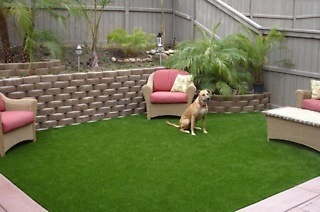 Artificial Grass from R699 Including Delivery (Up to 48% Off)