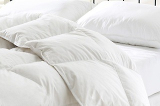 Duck Feather Duvet and Complimentary Duck Feather Pillow from R499 Including Delivery (Up to 62% Off)