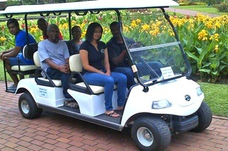 Picnic & Golf Cart Tour of Durban Botanic Gardens from R440 for Two with Blue Dolphin Tourist Service (Up to 70% Off)