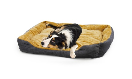 Dog Pad from R299 Including Delivery (Up to 33% Off)