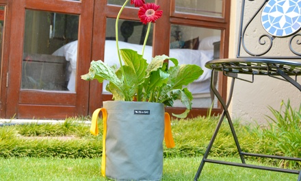 Canvas Pot Planter from R199 Including Delivery (Up to 22% Off)