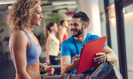 Personal Trainer Level Up Cross Fitness and Group Fitness Course for R499 for One with SMART Majority (Up to 87% Off)
