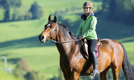 One Horse Riding Lesson from R100 for One at Inchanga Stables (Up to 65% Off)