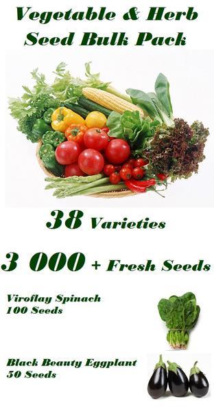 Vegetable & Herb Bulk Seed Pack Special