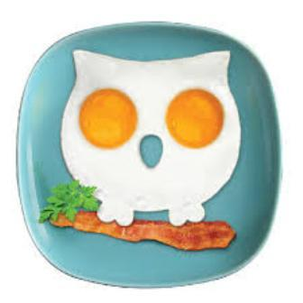 Funny Side Up Owl Egg Shaper By Fred & Friends