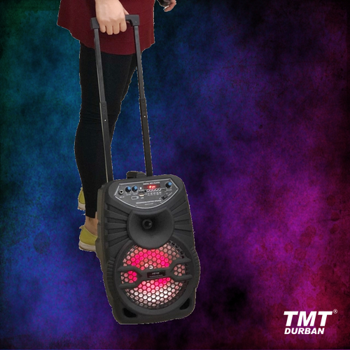 Portable Party Speaker with Adjustable Handle