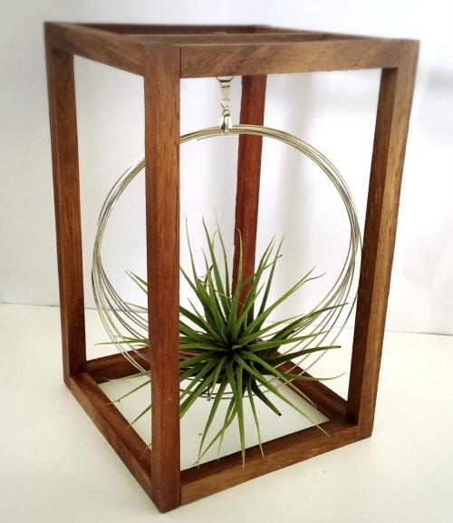 Stackable 3D Bonsai Swing