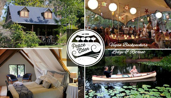 Peace of Eden, Knysna - Escape to this magical eco Forest Backpackers Lodge & Vegan Retreat for a Getaway for 2 People in a Forest Tent or Woodcutter Cabin.