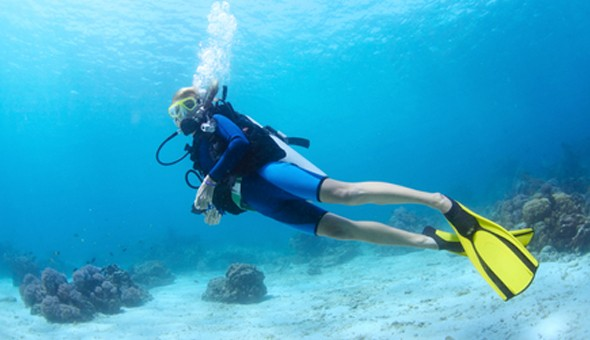 A 4-Hour Scuba Experience: Discover Scuba and Explore the Beauty of the Deep Blue! All Welcome - Inexperienced, Novice and Professional Divers!