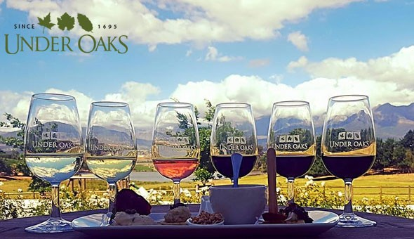 An Exclusive Wine & Taste Pairing Experience for 2 People at Under Oaks!