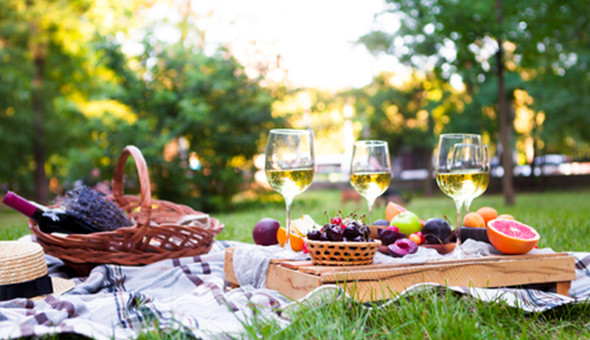 Cloof Wine Estate: A Gourmet Picnic with a Bottle of Wine for 2 People! Includes: a Selection of Meats, Gourmet Cheeses, Assortment of Spreads, Farm-style Bread, Seasonal Fruit, Mini-Chocolates & More!