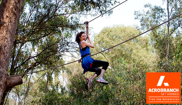 Entrance Passes for up to 4 People to Monkey Moves (Green Course) at Acrobranch Adventure Park, Stellenbosch!