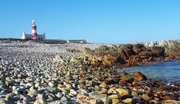 A 2 Night Stay for 2 People at Pebble Bay, Agulhas National Park!