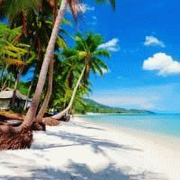 Thailand - The Islands : 4 Star ex Cape Town : Let's Explore! Return flights from Cape Town. Approximate taxes. All transfers. 7 nights' accommodation in Koh Samui at the 4-star Bhundhari Spa Resort & Villas in a Deluxe Room. Local Life Samui Street Eats in Koh Samui. Koh Tao and Koh Nang Yuan by sp
