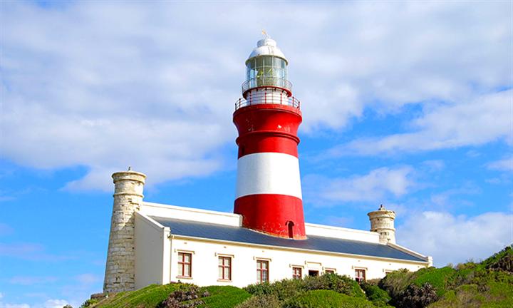 Cape Town To Cape Agalhus Day Tour for Four with Fairest Cape Meander