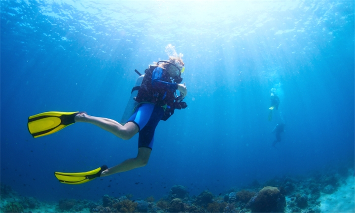 Two-Hour Scuba Try Dive Course from R179 for One with Scubaversity