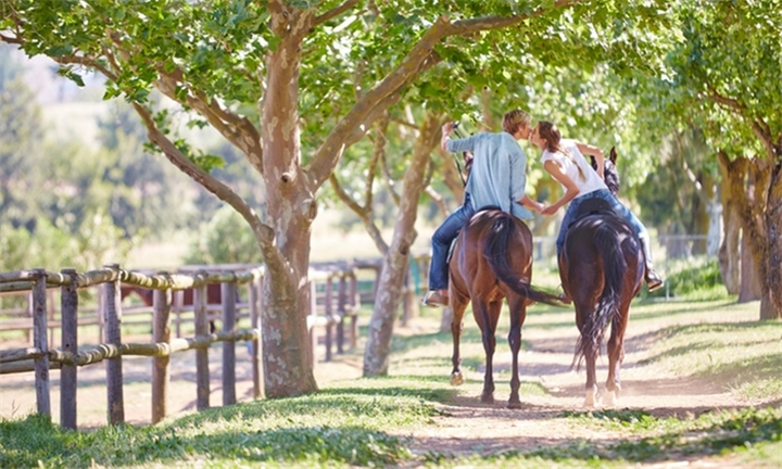 A 60 or 90-Minute Horse Riding Experience and a delicious Pulled Pork Sandwich or Hamburger and Craft Beer tasting for Two People for R550 at Equine Sport Centre