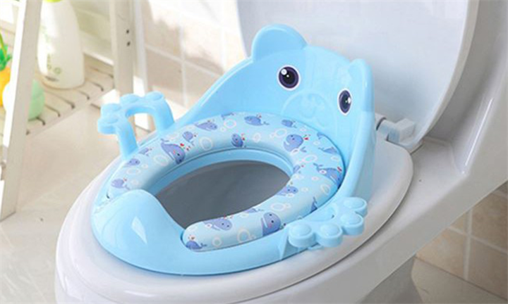 Bear Potty Seat for R299 incl Delivery