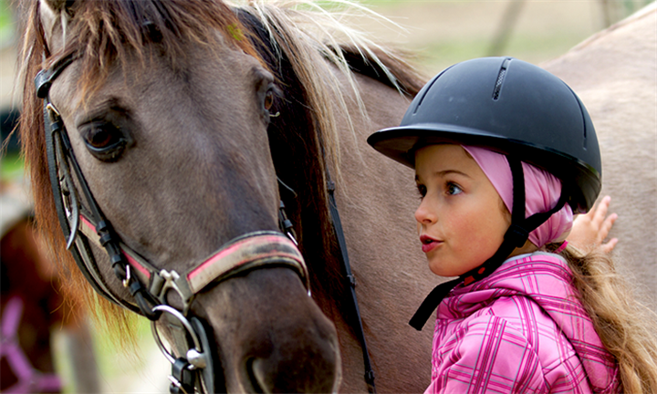 30-Minute Pony Ride for Children from R99 at Equestrian Centre Overstrand