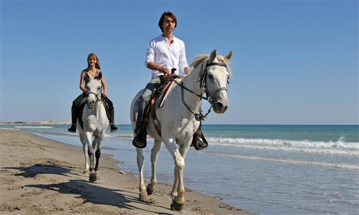 Full Day Horse Ride on the Beach to Restaurant including Lunch from R1199 at Equestrian Centre Overstrand
