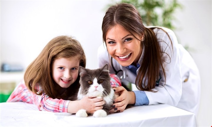 Veterinary Care Practitioner Diploma for R399