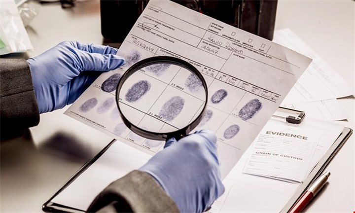 Criminology for Beginners Diploma for R399