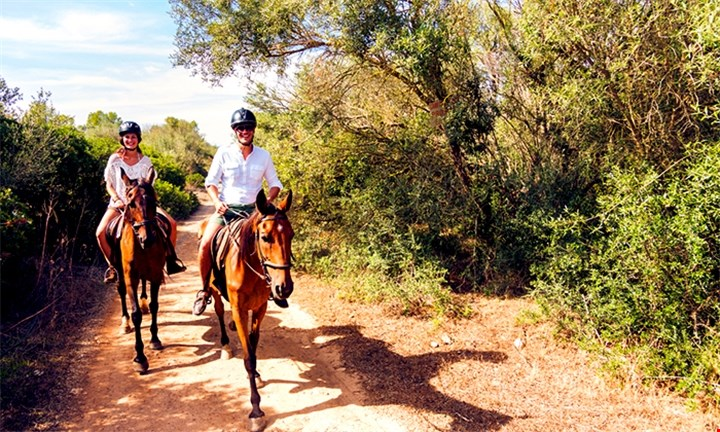 Half-Day Horse Riding Experience with Wine for 2 people For R599 @ Alpha Equestrian