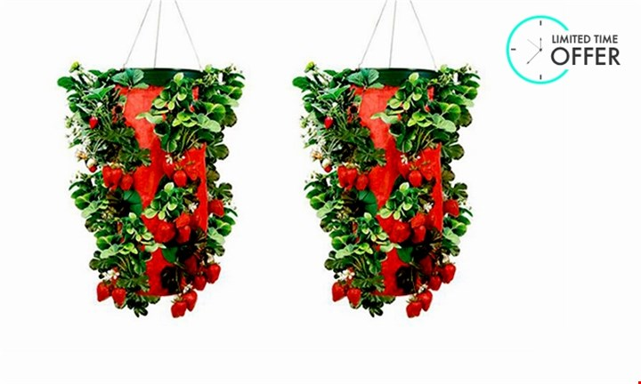 Buy 1 Get 1 Free - Topsy Turvy Upside Down Strawberry Planter for R199 incl Delivery