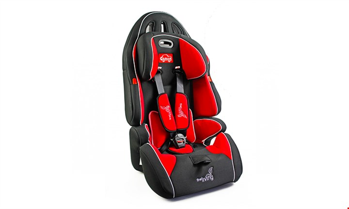 Fine Living Baby Car Seat for R1149 incl Delivery