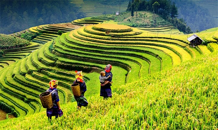North Vietnam: 8-Day Tour Including Meals