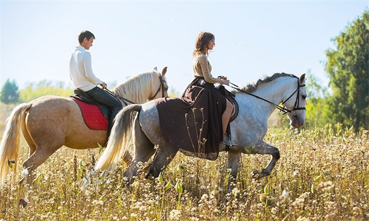 Romantic Outride with Picnic Snacks and a Bottle of Wine at Horse Riding Adventures