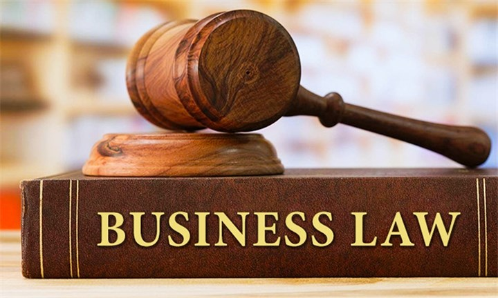 Business Law Diploma with Vizual Coaching Academy