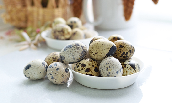 Pay R49 for a Box of 18 Quail Eggs at Quail Productions