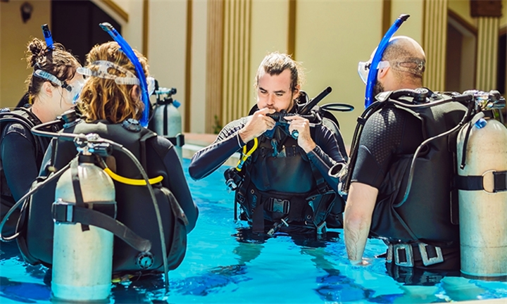 2-Hour Try-Dive Scuba Diving Experience for One or Two with Plan D Scuba Adventures
