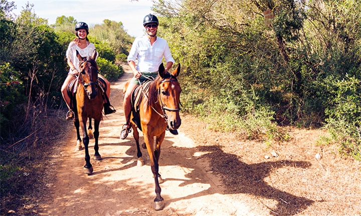 60-Minute Horse Safari Ride for up to Four at ESDA