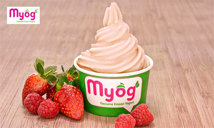 Choice of Frozen Yogurt in a Medium Cup with Unlimited Toppings at Myog Frozen Yogurt