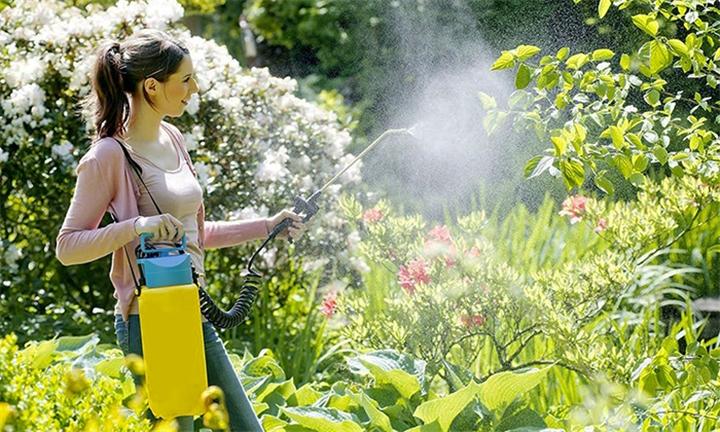 Pesto 10L Water Pressure Sprayer for R299