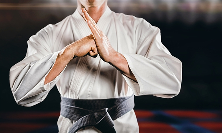Martial Arts Classes for One or Two at Fellowship Martial Arts Academy