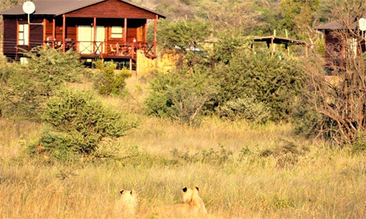 Gauteng: 1 or 2-Night Weekday Stay for up to Four at Abendruhe Lodge